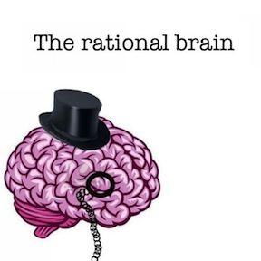 brain copy 3