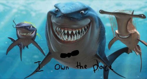 bruce wayne-shark